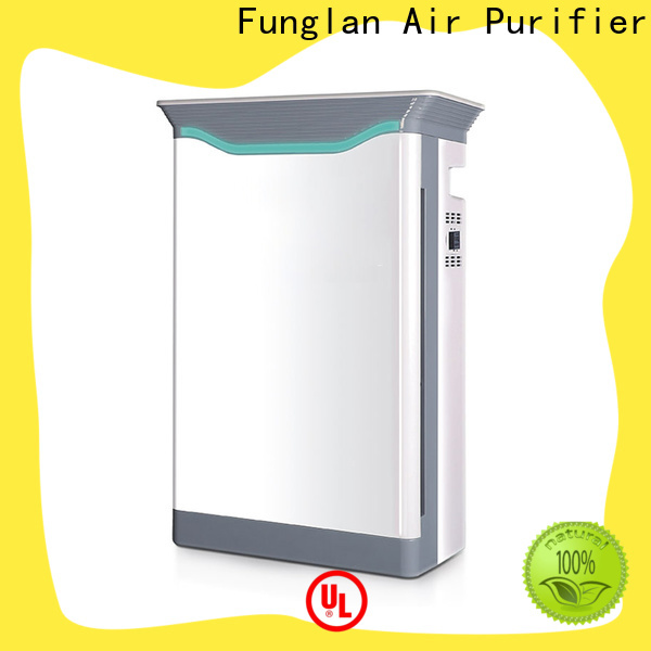 High-quality air cleaner fan factory for household