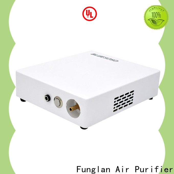 Funglan air car cleaner factory for purifying car odors